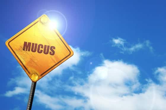 Mucus