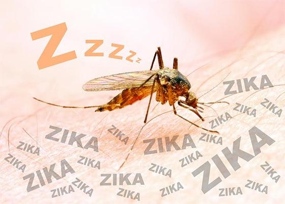 Zika Virus Insanity
